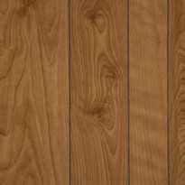 New Spirit BIrch laminate plywood paneling