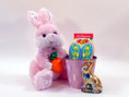 Easter Bunny Gift Basket with his bucket of tasty treats!