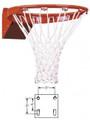 FT186 Flex Basketball Goal