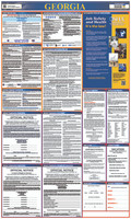 Labor Law Poster Georgia 40X24 State And Federal