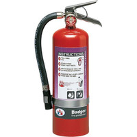 Badger™ Extra 5 lb Purple K Fire Extinguisher w/ Wall Hook - 3488