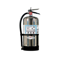 Amerex® 6 L AFFF Foam Extinguisher w/ Brass Valve & Wall Hook - 54