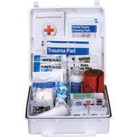 50-Person, 199-Pc ANSI B Weatherproof First Aid Kit, Plastic - 90566