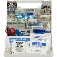 50-Person,183-Pc ANSI A+ First Aid Kit, Plastic - 90639