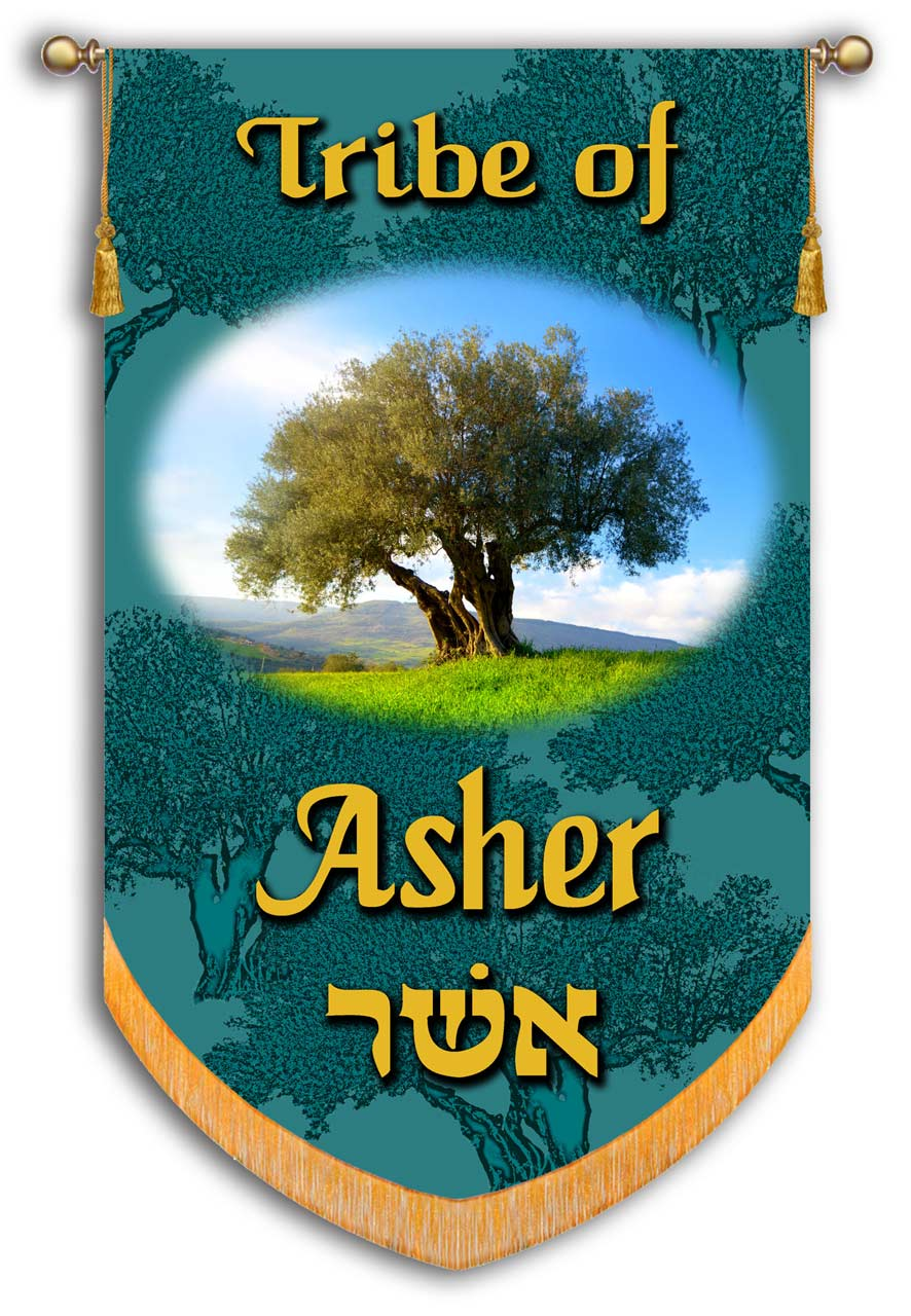 Asher one of the 12 Tribes of Israel