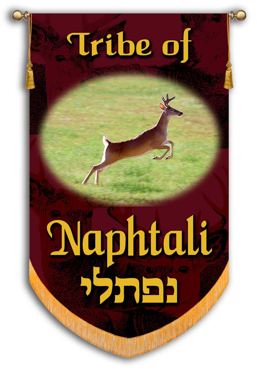 Naphtali a Tribe of Israel