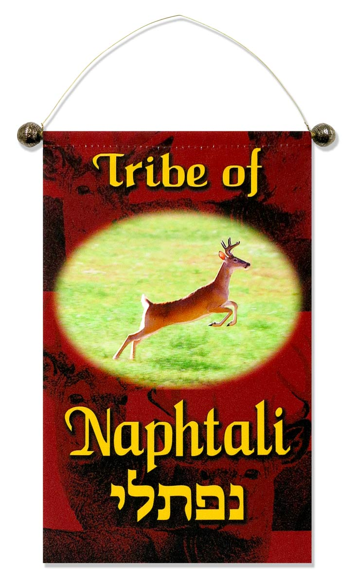 small-tribe-on-hanger-naphtali.jpg