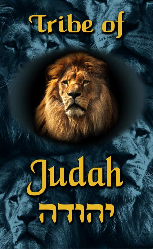 tribe-of-judah-printed-sq-small-1.jpg