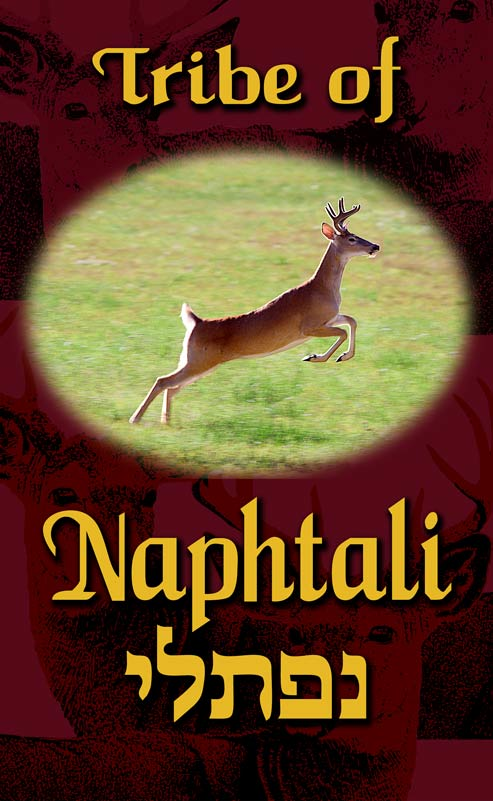 tribe-of-naphtali-printed-sq-small-1.jpg