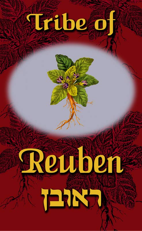 tribe-of-reuben-printed-sq-small-1.jpg
