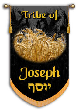 Copy of Tribe of Israel - Tribe of Joseph printed banner