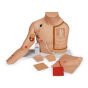 Buy ESP Chester Chest - Life-like Model of a Human Torso (ZKL-400-P) sold by eSuppliesMedical.co.uk