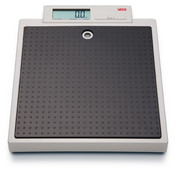 seca 876 Class (III) Digital Floor Scale