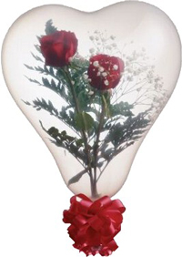 heart shaped qualatex stuffing balloon