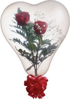Qualatex 11 or 6 inch Heart Shape Balloon, CLEAR WITH NO PRINT