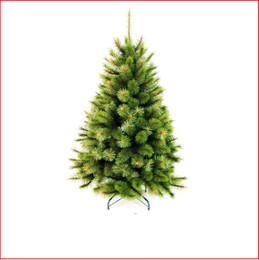 Radiata Balmoral Pine 1.37m Christmas Tree
