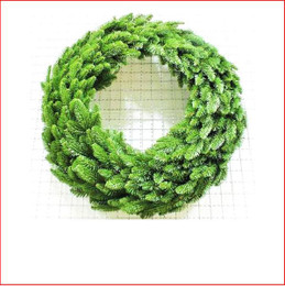 Abies Nordmann Wreath 61cm Green