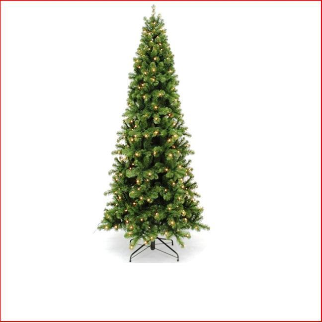 Pencil Pine 1 83m Pre Lit 432 Led Lights