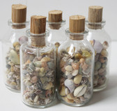 Medium Shell Filled Bottles - 10 Pieces