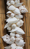 White Shells Cluster Garland