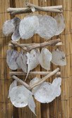 Triangle Driftwood & Placina Shell Chimes