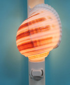 Striped Tonna Seashell Night Light