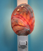 Natural Red Abalone Shell Night Light