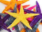 "3-4"" Colored P.I. Starfish - 50 PIeces"