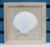 Framed Irish Scallop