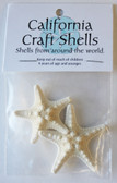 White Bumpy Starfish Craft Bags