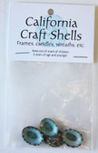 Green Limpet Craft Bag