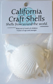 White Pectin Shell Craft Bag