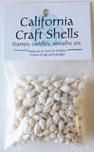 White Nassa Shell Craft Bag
