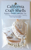 Cut White Conch Shell Craft Bag