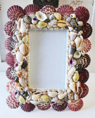 Multi-Color Seashell 3.5 x 5 Picture Frame