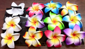 Medium Plumeria Hair Clip