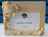 Sea Turtle Frame