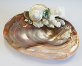 Pearl Turbo - Dark Oyster Soap Dish