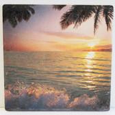 Ocean & Palm Coaster