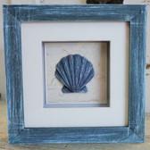 Blue Clam Shell Shadow Box