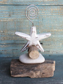 Starfish Picture Holder