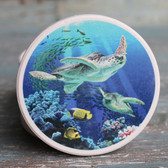Sea Turtles Car Coaster
