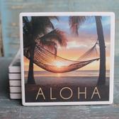 Aloha Hammock & Palm Coaster