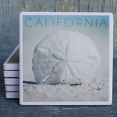 California Sand Dollar Coaster