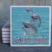 California Dolphins Coaster