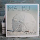 Malibu Sand Dollar Coaster