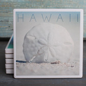 Hawaii Sand Dollar coaster