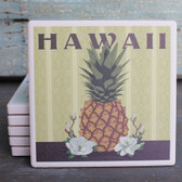 Hawaii Pineapple coaster