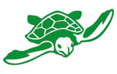 Green Marine Turtle Sticker
