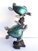 Double Pearl Turtle on Coral